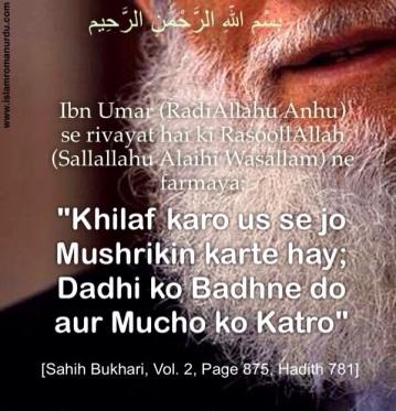 Dadhi ko Badhne do aur Mucho ko katro