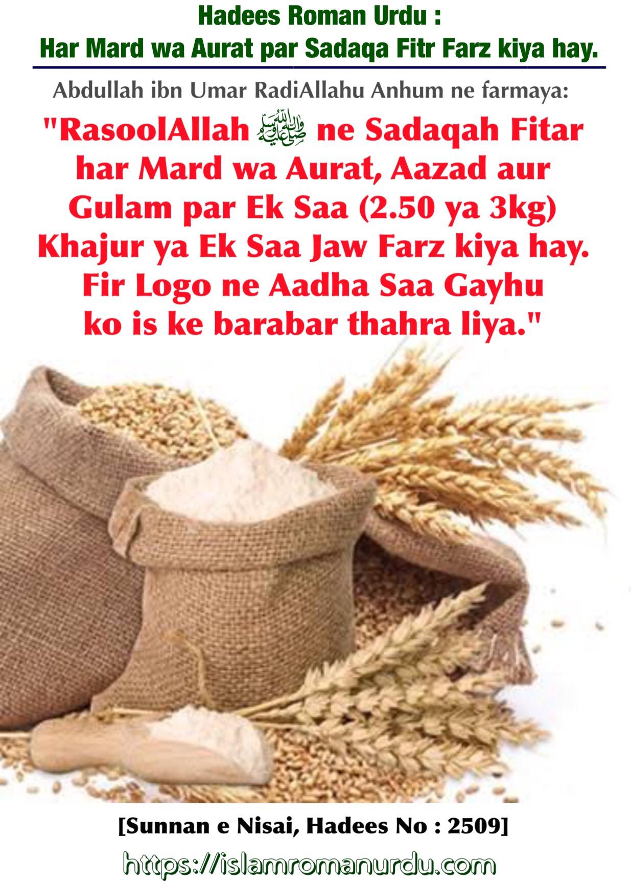 Good Hadees English Ramadan - image  Image_234686 .jpeg?w\u003d900